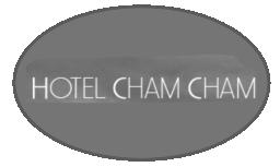 chamcham laser